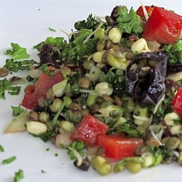 Marinated Sprouted Bean Salad